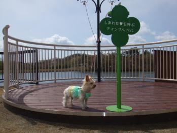 りんどう湖3