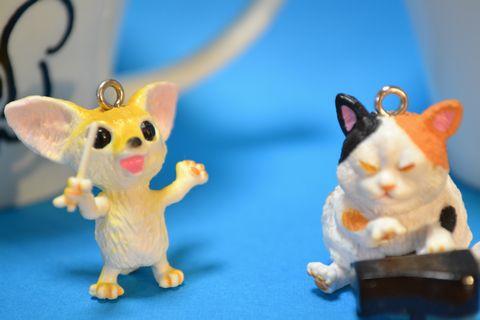 犬と猫 オーケストラ