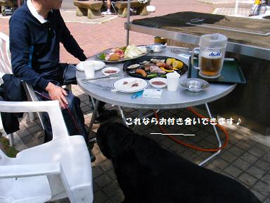 アタシ運動嫌~い、食べる事大~好き♪