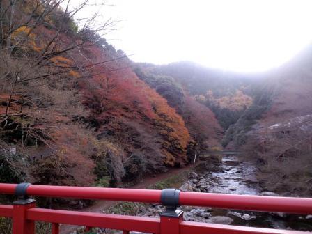 愛宕山 登山道入口 清滝