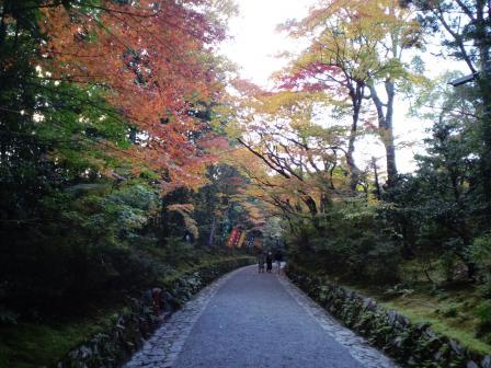赤山禅院 参道 11月 24日
