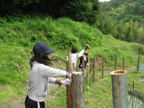 イノシシ対策のため棚田のフェンスの補強しました。