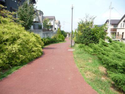 11.09.24遊歩道1