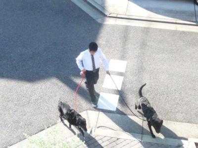 11.11.01散歩2