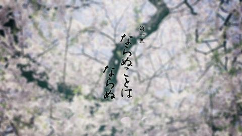 yaenosakura0108.jpg