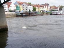 Regensburg (23)