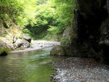 May 9thm, 2011 Okutama (2)