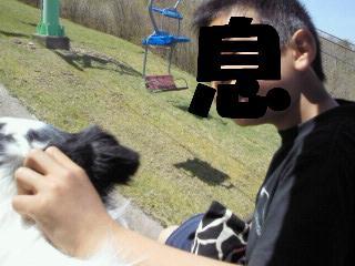 201005081038001.jpg