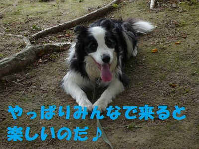 P1030418.jpg