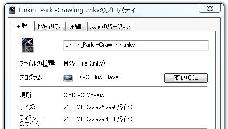 Size_DivXHD.jpg