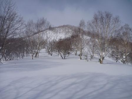 20110130弥五兵衛岳 008