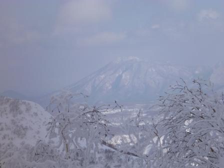 支笏湖の山