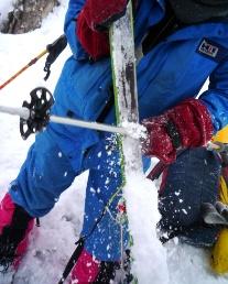 シールに張り付く雪