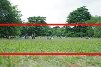photo254.jpg