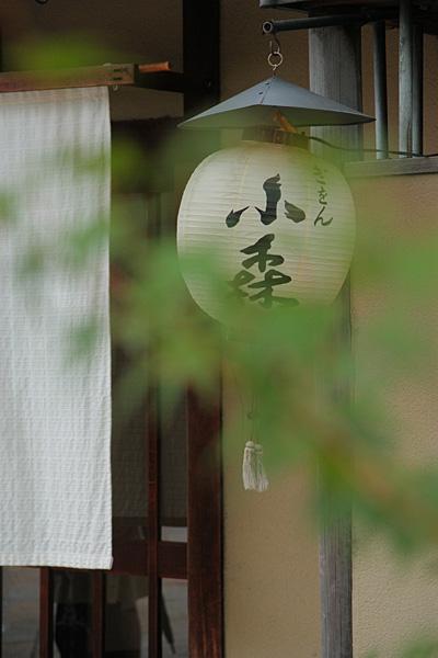 photo368.jpg