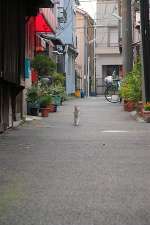 photo415.jpg