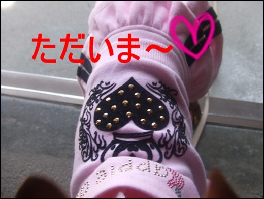 20100410_09971_M.jpg