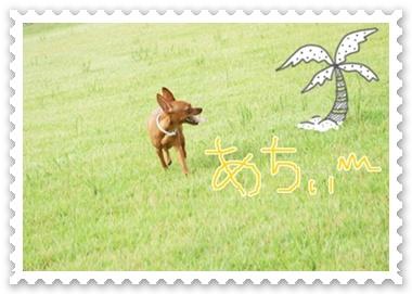 20100813_10651_.jpg