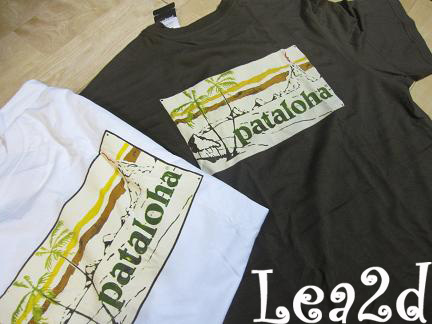 2009年8月-2010年1月 Patagonia のTシャツ