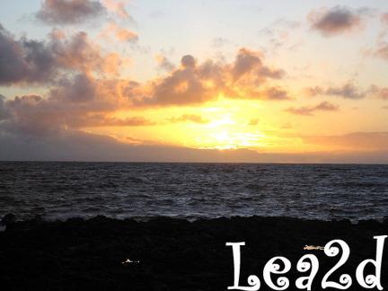 2009年1月 Sandy Beach(サンディ ビーチ)のサンライズ ブログへ移動