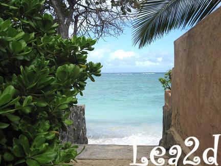2009年1月 ラニカイビーチ ブログへ移動