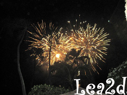 2010年1月 HAU TREE BEACH BAR(ハウ・ツリー・ビーチ・バー)からの花火 ブログへ移動