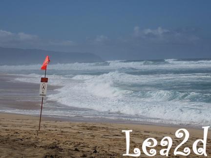 2010年1月 ちびっと動画な1月のSunset Beach(サンセットビーチ)ブログへ移動