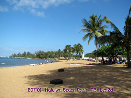 2011年1月 Haleiwa Beach Park(ハレイワ・ビーチ・パーク) width=