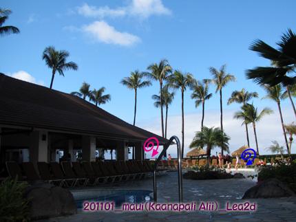 201101kpap1.jpg