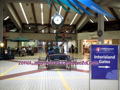 2011年1月 カフルイ空港