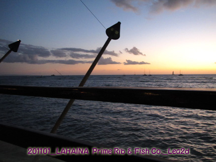 201101mfc5.jpg