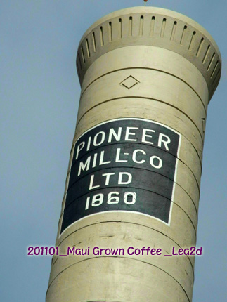 2011年1月 Maui Grown Coffee Company Store