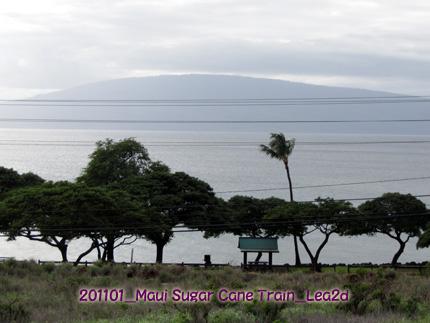 2011年1月 マウイ島 砂糖きび列車からの景色