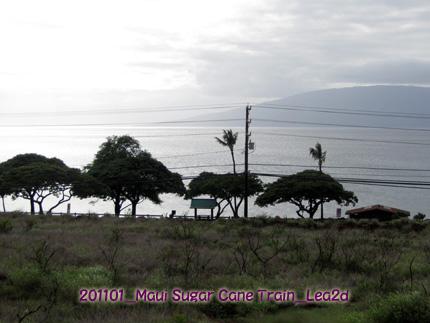 201101mst18.jpg