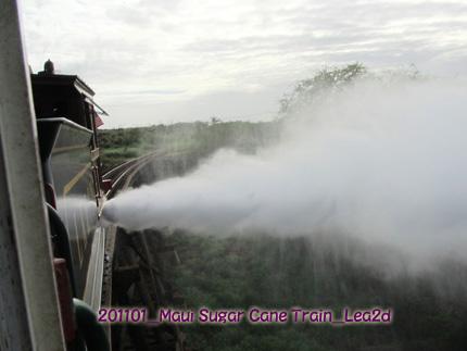 201101mst33.jpg