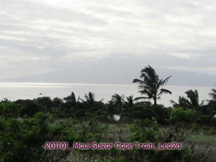 201101mst34.jpg
