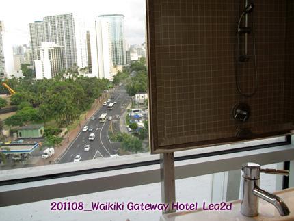 201108wgwh51.jpg
