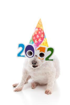 2012-Dog.jpg