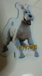 2011120322510001.jpg
