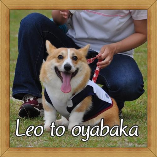 ぼくレオだよっ