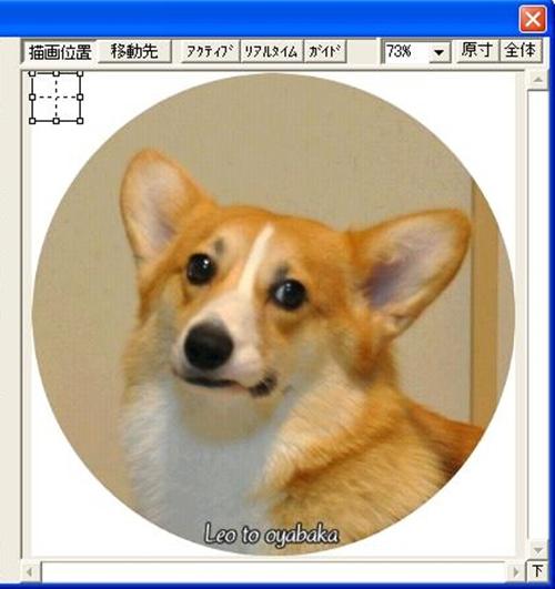1の画像のイメージ