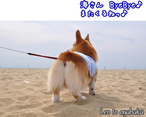 海さん ByeBye♪