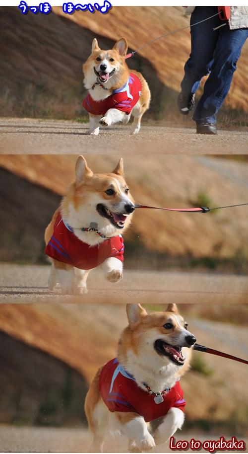 真剣走り♪