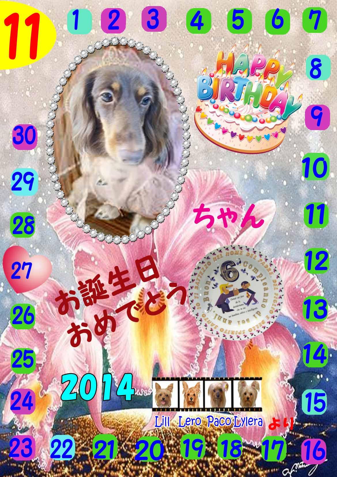 11-27-2014リオちゃん誕生日カード