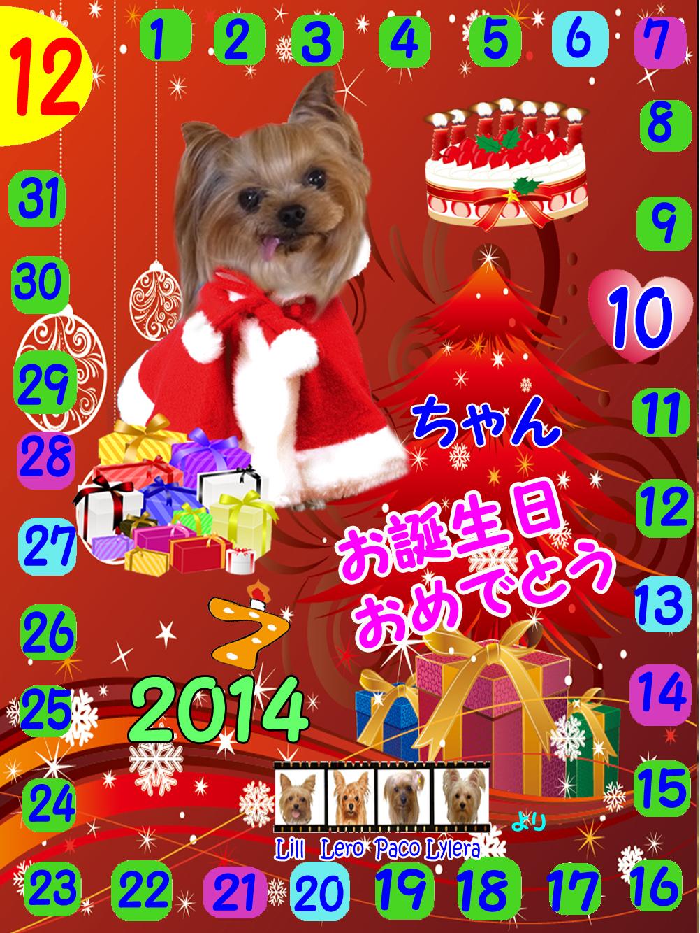 12-10-2014リヨンちゃん誕生日カード