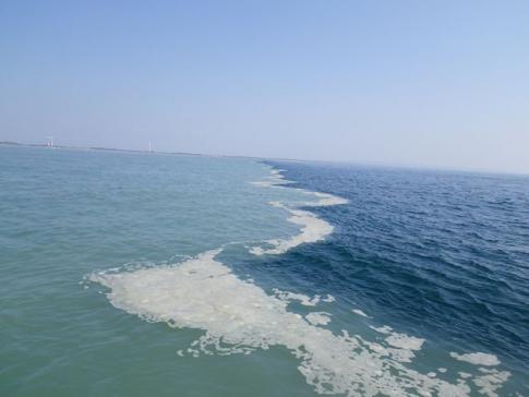 天竜川とのくっきり潮目