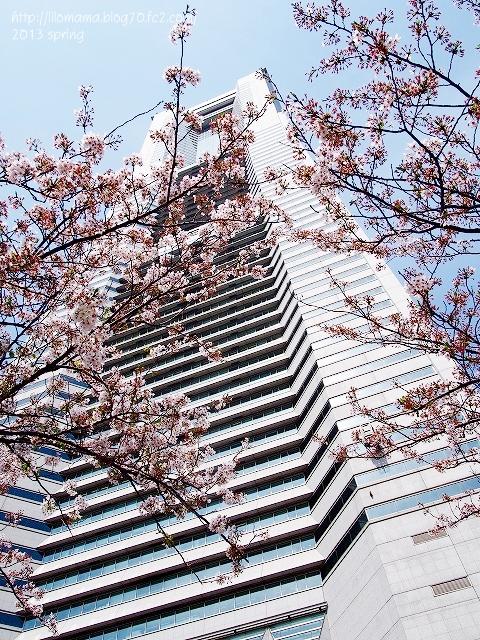 ランドマークと桜