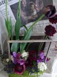 tulip black hero