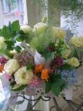 open oiwai flower