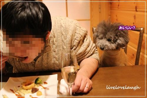 IMG_0479でぃなー9